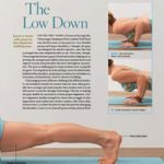 Basics: The Low Down